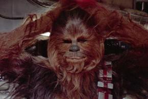 Chewbacca, hospitalizado
